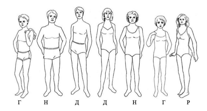 Типажи мужчин по ларсон веб девушка модель симс 4